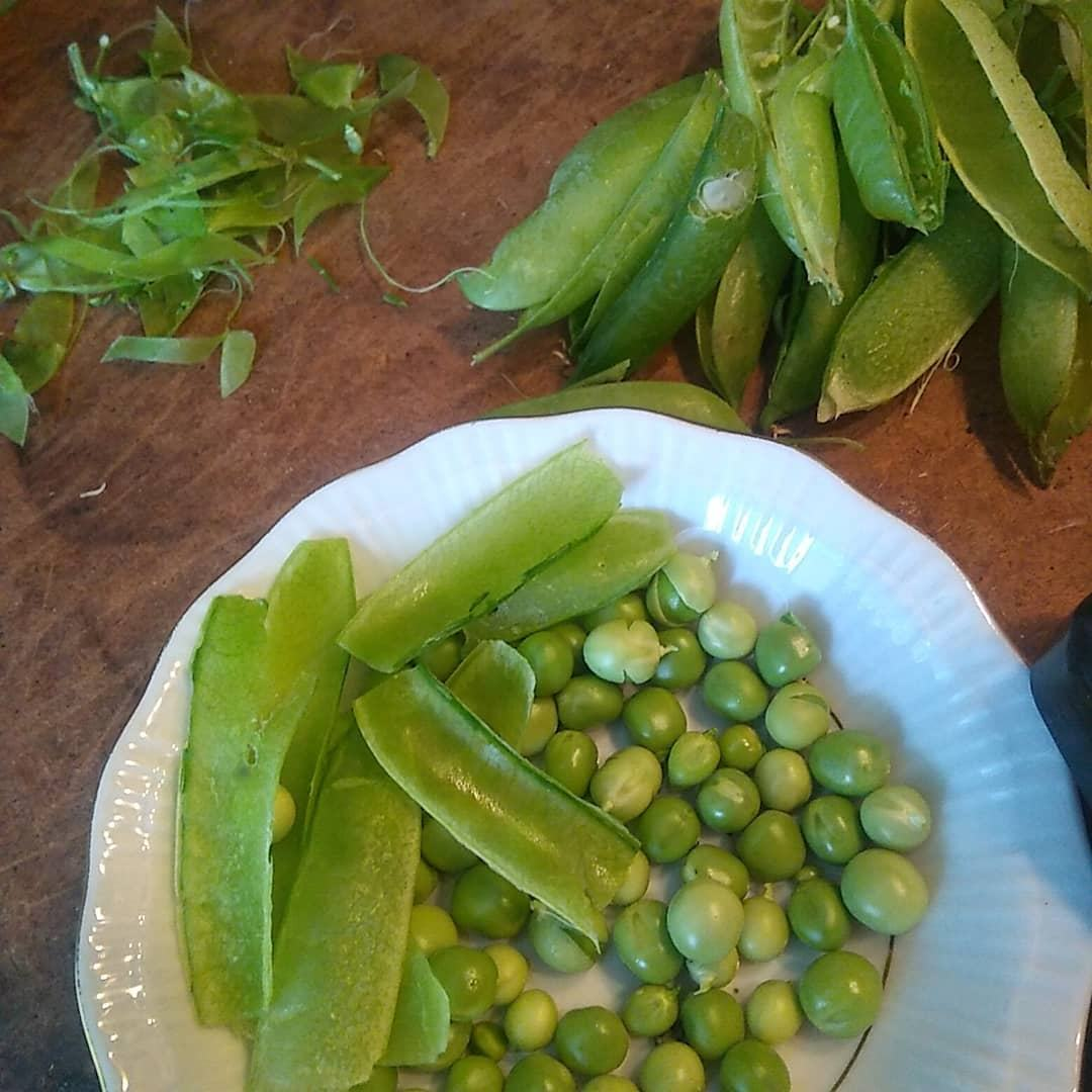 2018 Frozen Green Peas from south Africa