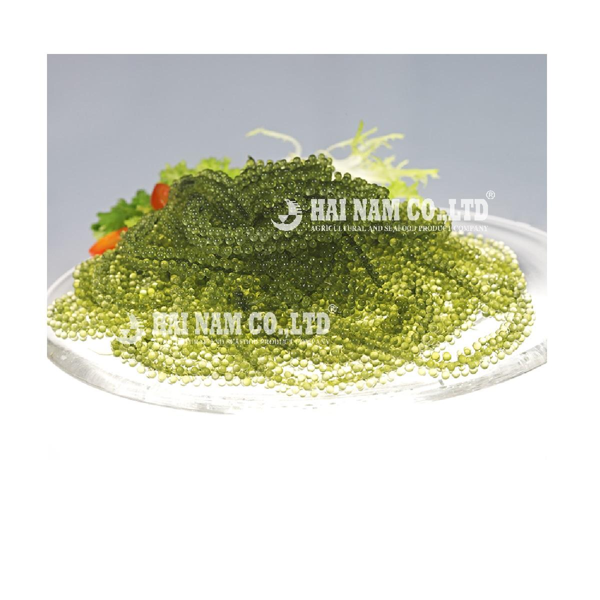 Wholesale High Quality Characteristics Taste Fresh Salted Style Grape Seaweed Made In Vietnam