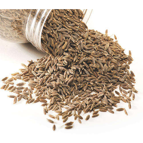 Hot Selling Price Cumin Seeds / Jeera from India