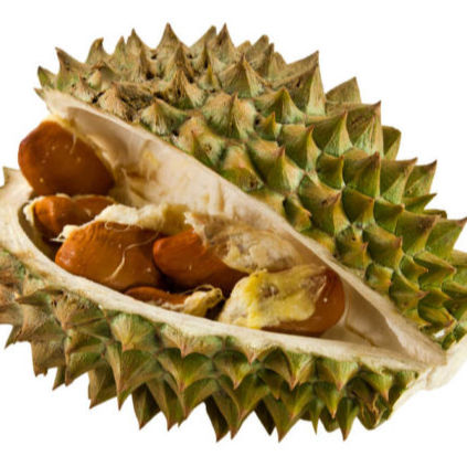 DURIAN SEEDS , DRIED SEEDS 100% FRUITS , TOP QUALITY