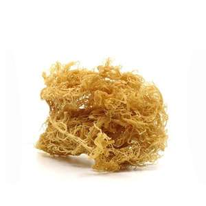 CONTACT US TO GET 11 BENEFITS OF SEA MOSS/IRISH MOSS THAT CHANGE YOUR LIFE ! // VICKY + 84 90 393 1029
