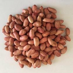Best Quality Raw Peanuts, pea nut, Roasted, Raw Ground nuts For sale