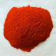 HACCP/HALAL of Spices clove, clove spices, spices