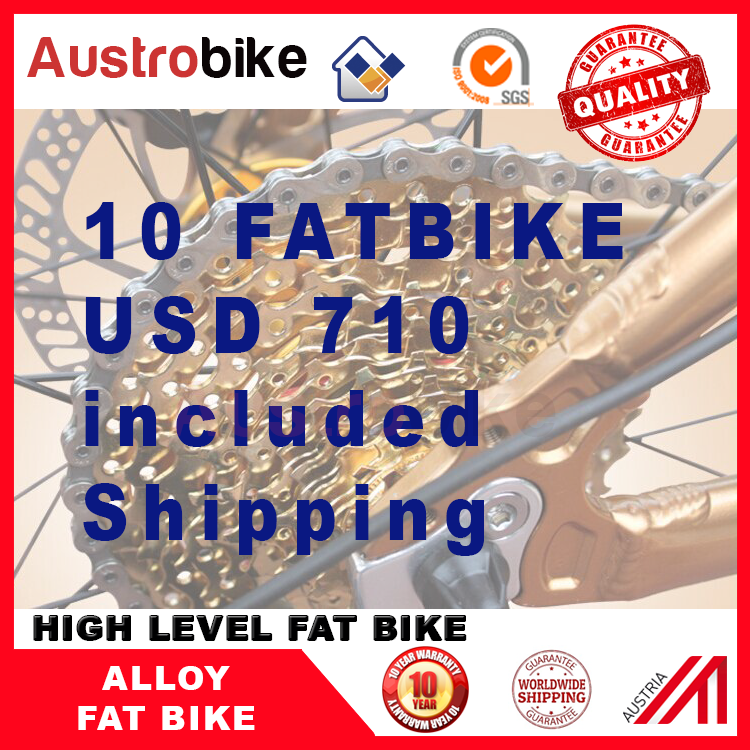 cheap price fat tire bike , 10 unit fatbike , fat tyre bike 700 USD included shipping