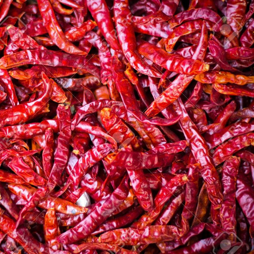 Teja S4 Chilli Teja S17 India Chili Teja S17 import export red chilli dry red chili