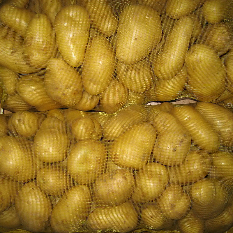 New harvest 2020 fresh potato