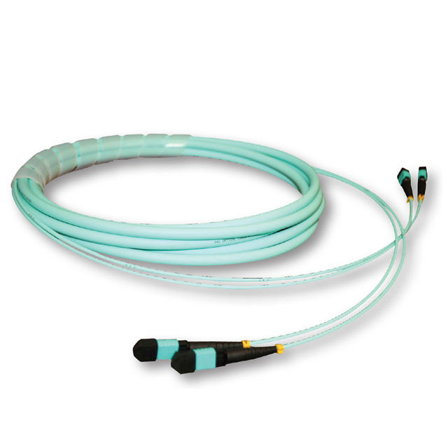 Bagasi Harness MPO Patch Cord