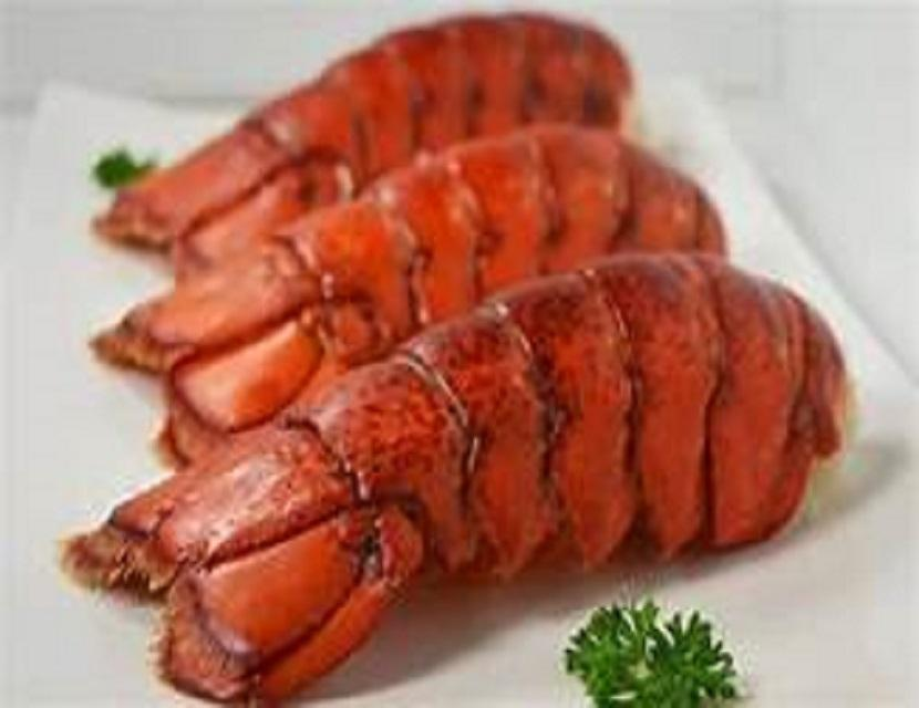 FRESH FROZEN LOBSTER/FROZEN SEAFOODS
