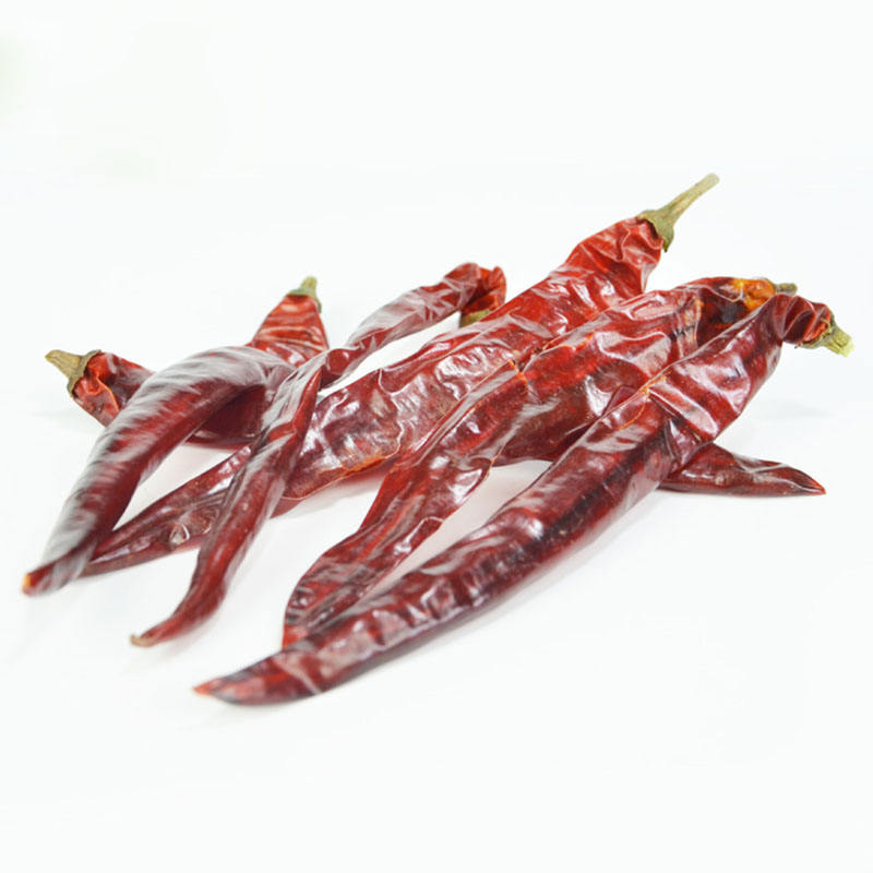 chili pepper dried red chili hot spicy wholesale new fresh high quality