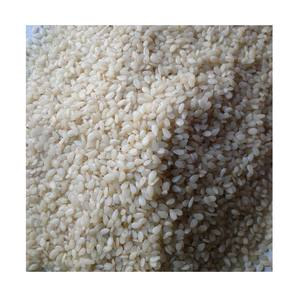 White/Gold/Black sesame seed from Vietnam for export