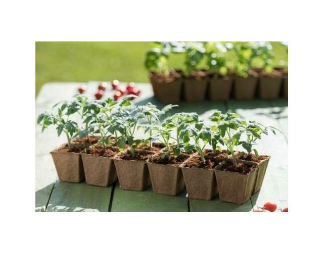 Cocopeat Blocks 5 Coir Pith Coco peat Discs for Potting Soil