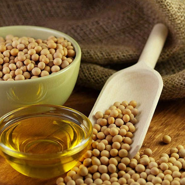 New crop GMO Soyabean/Soybean for Sale