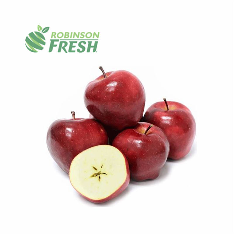 Freschi di Apple Frutta Mela Red Delicious Robinson Fresco di Buona Classificato Frutta Grossista Rosso Fresco Stark Delicious Verde Grown a Livello Locale