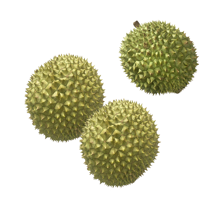 Frozen durian for sale Packaging Bulk Cultivation Type Organic Freezing Process IQF