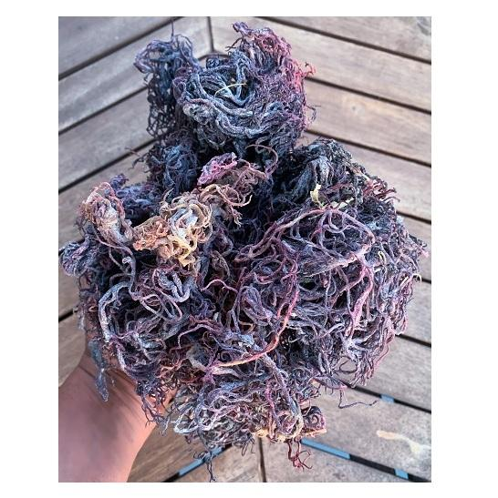 Fresco Viola di Mare Muschio/Multi Colore del Mare Muschio/Colorful Sea Moss in VietNam (WS: 0084987731263)