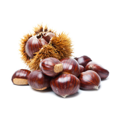 Wholesale Raw Sweet Fresh Chestnut price.