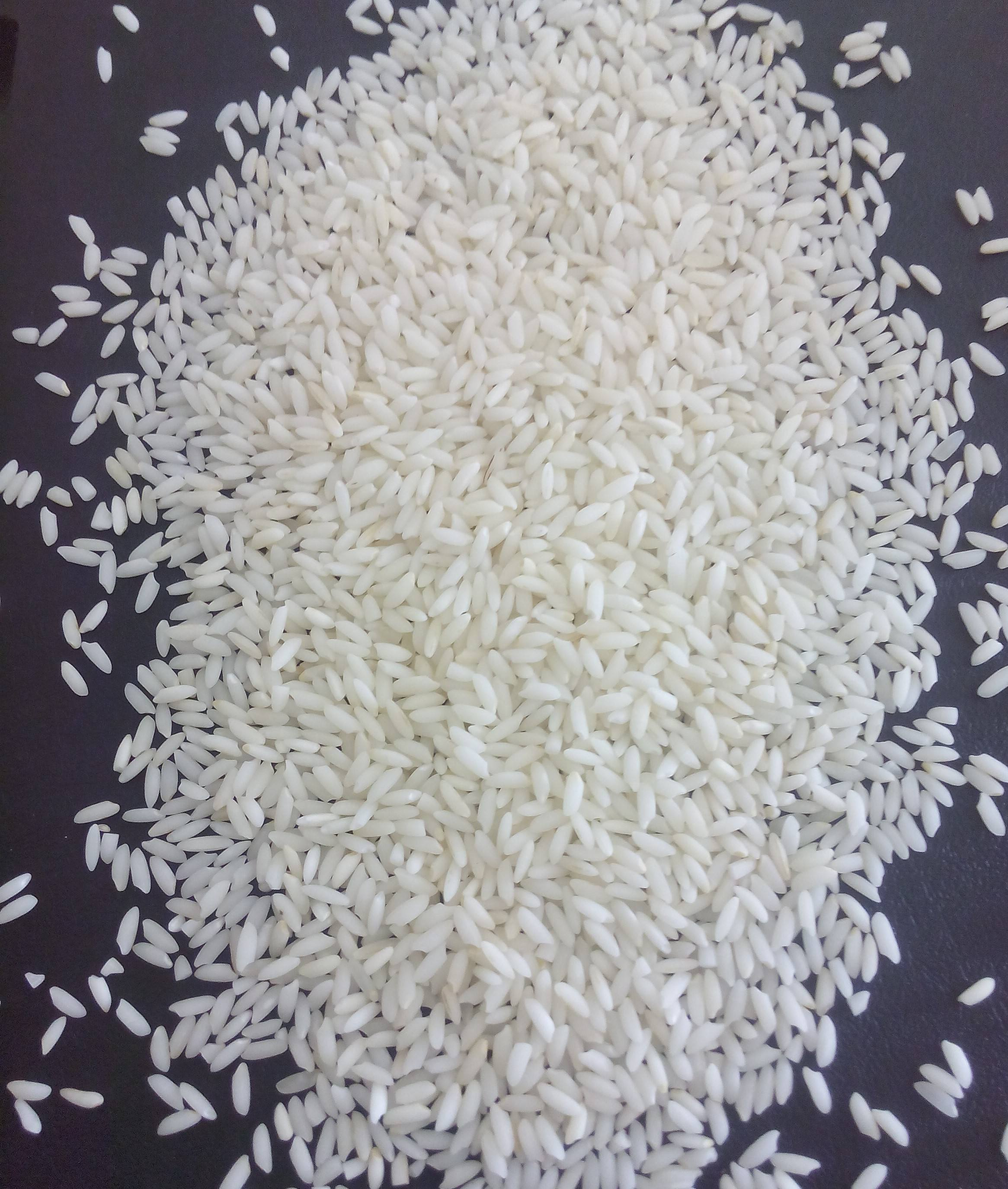 Exporters of Medium Grain Steam Rice