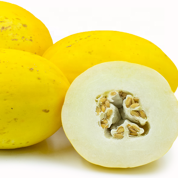 muskmelon FRUIT, yellow delicious musk melon seeds for sale