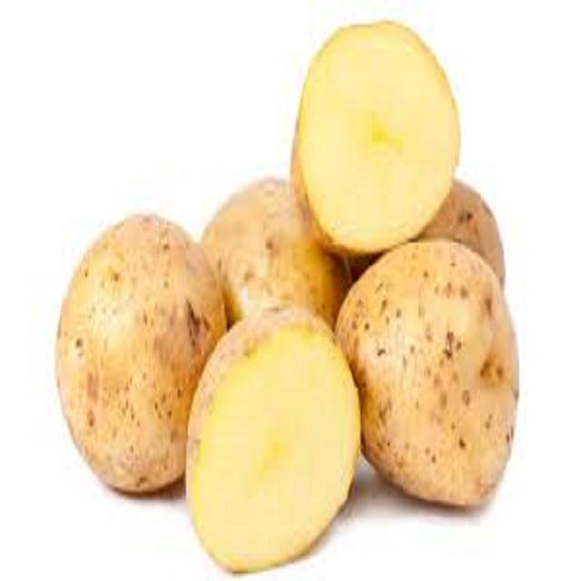 New crop fresh sweet potato wholesale price