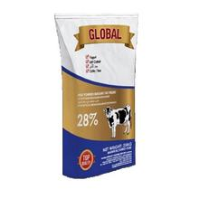 GLOBAL FAT FILLED MILK POWDER / 28% FAT