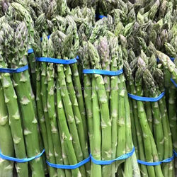 Best price Fresh Asparagus