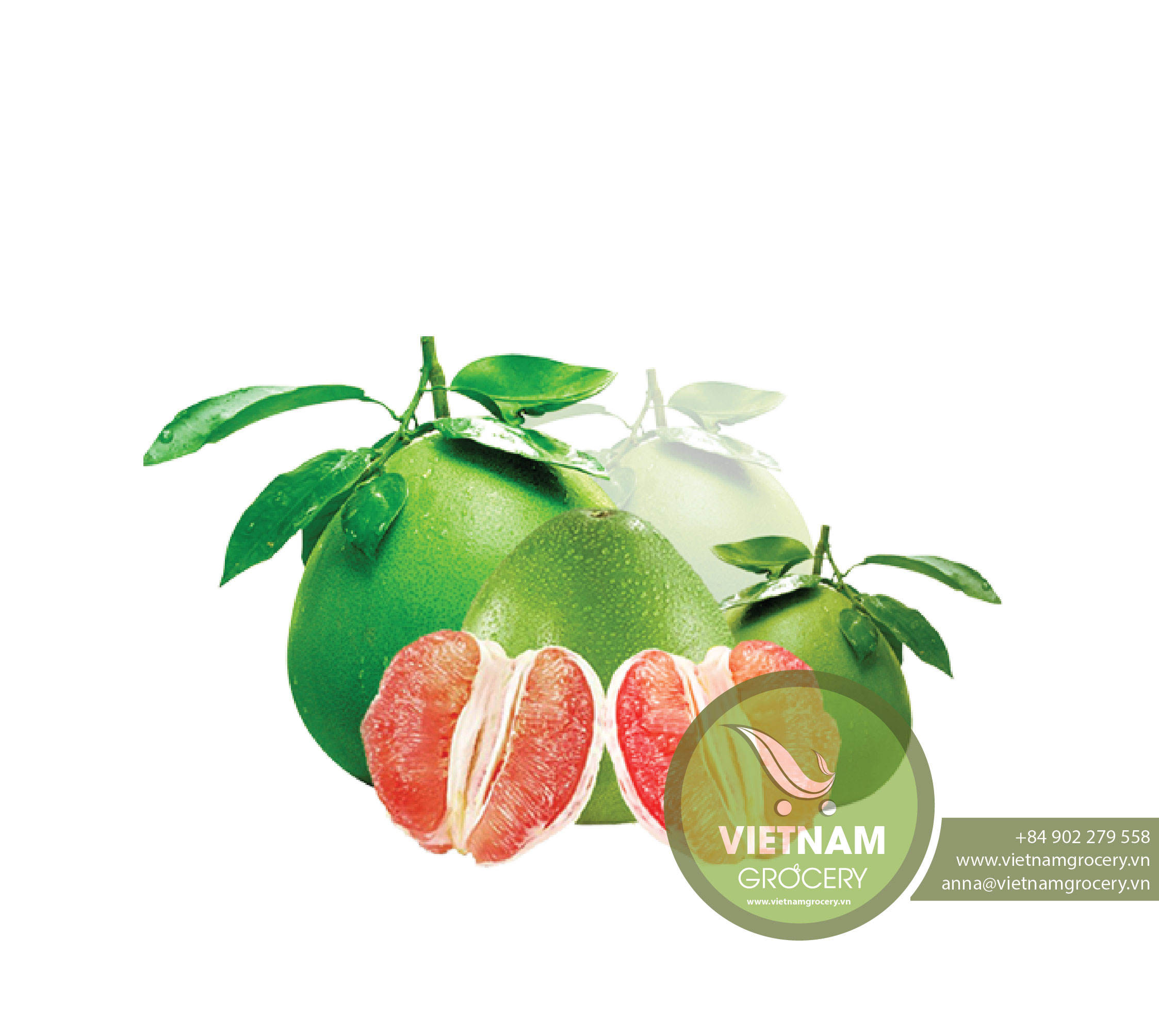 Vietnam Global GAP Green Skin and Pink Flesh Pomelo