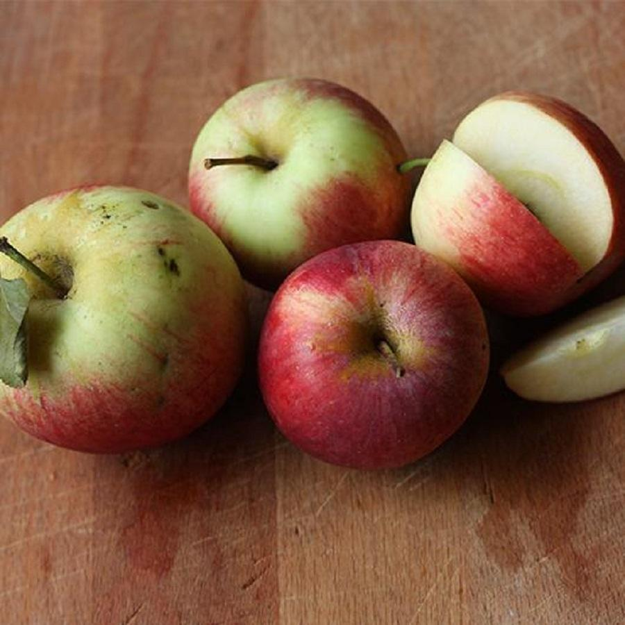 Bulk Fresh Apples ( Fuji, Gala, Red, Golden Delicious Apples) for sale