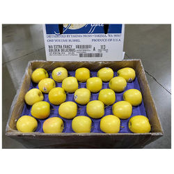 Best Suitable For Gardening /Agriculture Purpose Golden Delicious Grow Healthy And Delicious Apples