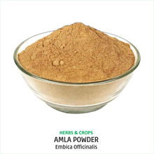 100% Pure and Natural Amla Powder- Emblica Officinalis- for sale from India in bulk