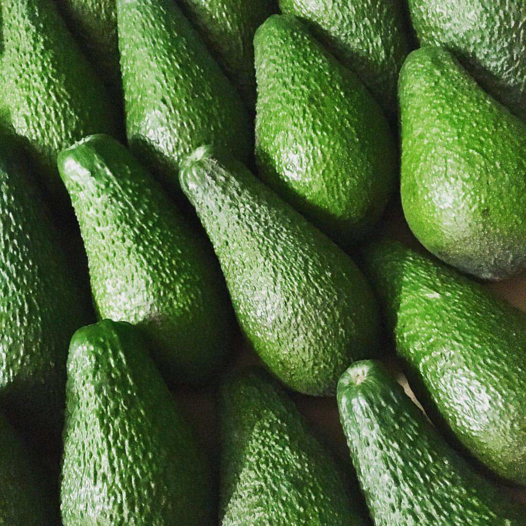 FRESH Avocado