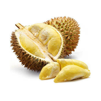 Fresh durian frozen durian from Mekong delta with nature ripening process and adapt with Japan, US standard