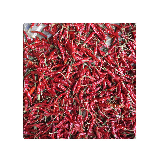 Wholesale Market Price Dry Red Chilli Price