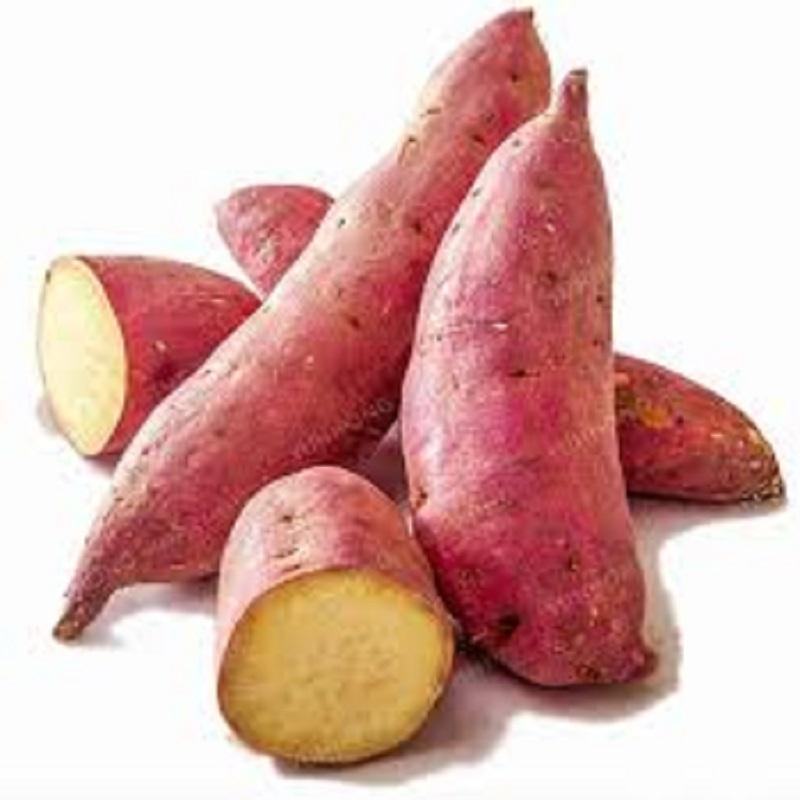 Best Price Fresh Potatoes Sweet Potatoes Available
