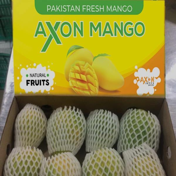 china pakistan mango exporter