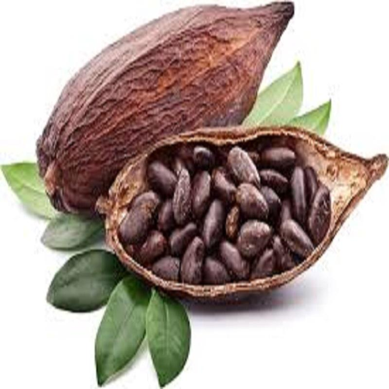 Cocoa :Natural/Alkalized Cocoa Powder