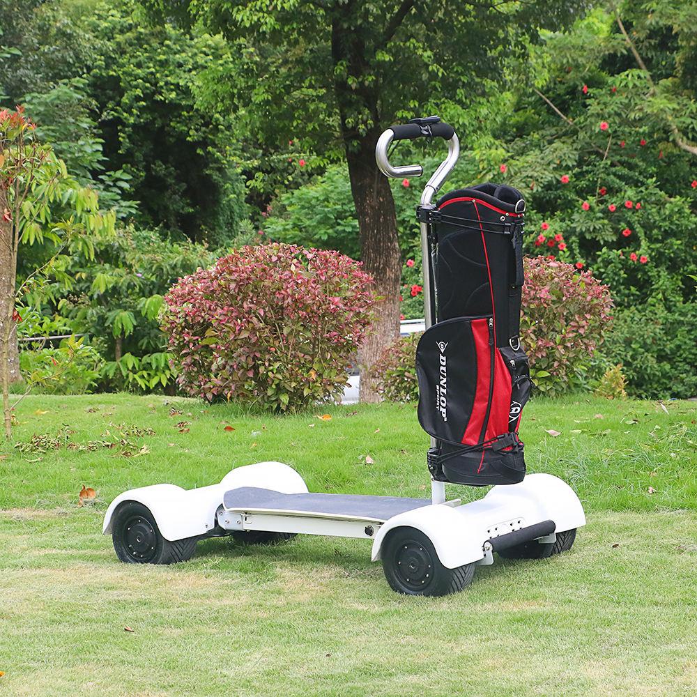 Encantado EcoaRider E7-2 de Golf <span class=keywords><strong>eléctrico</strong></span> de Skateboard 20.8Ah Golf Scooter para Adultos 2000W 4 ruedas carro