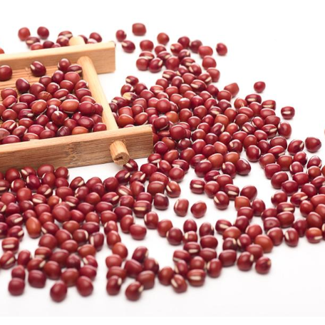 Black Beans Wholesale High Quality Packing Organic Green Mung Bean Red Black Soy Beans