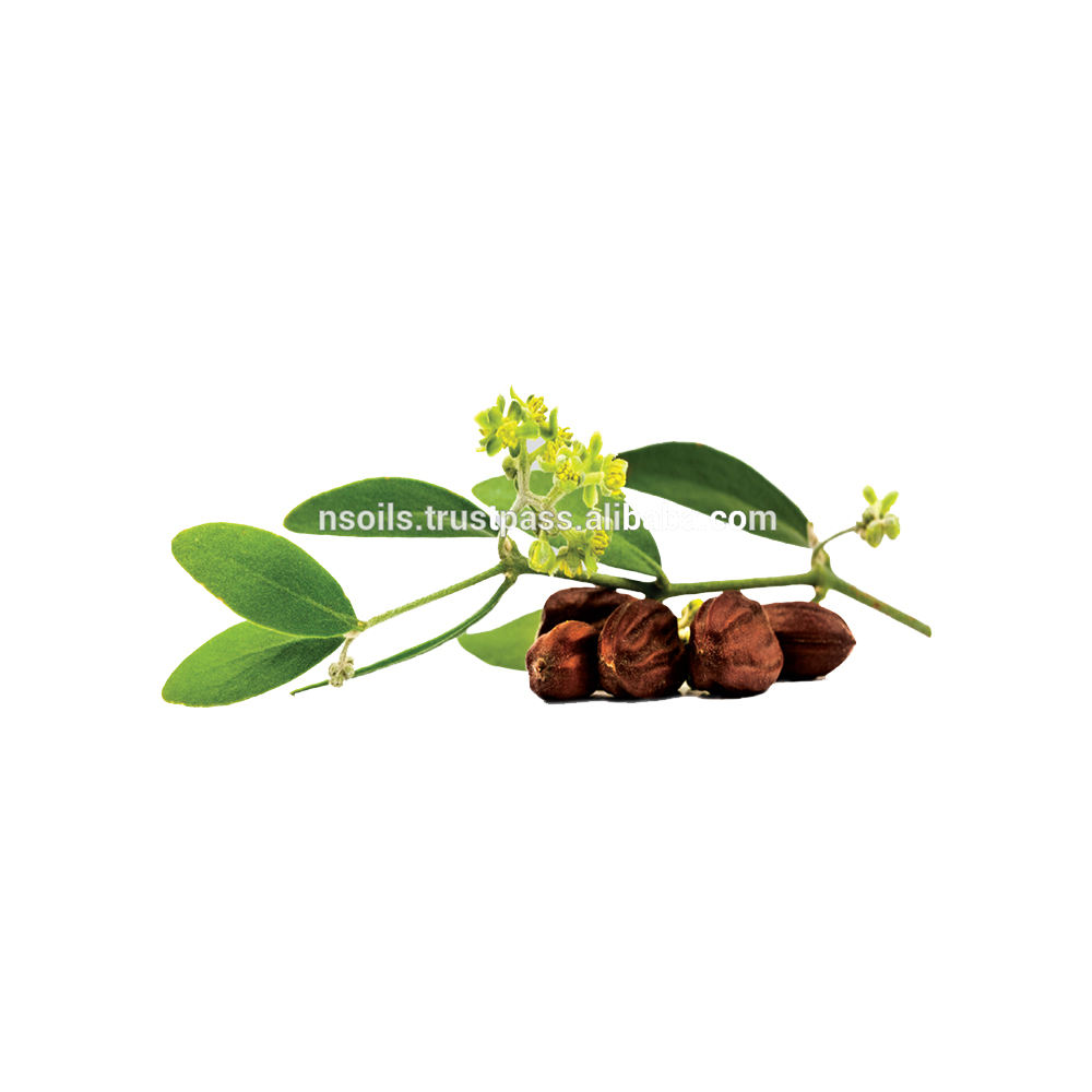 Wholesale Private Label Skin Care Products Cold Pressed 100% Pure and Natural Jojoba Oil