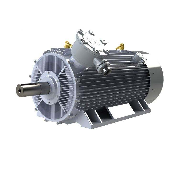IP54 Direct Drive Torque Abb Synchronous Motor Starting