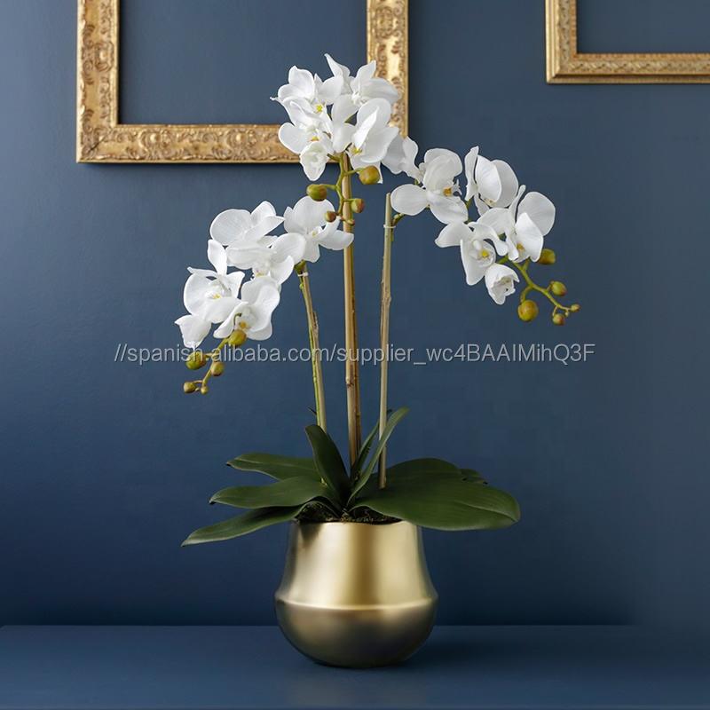 Nuevo diseño de seda Phalaenopsis conjunto Real toque flores orquídea Artificial Bonsai ollas