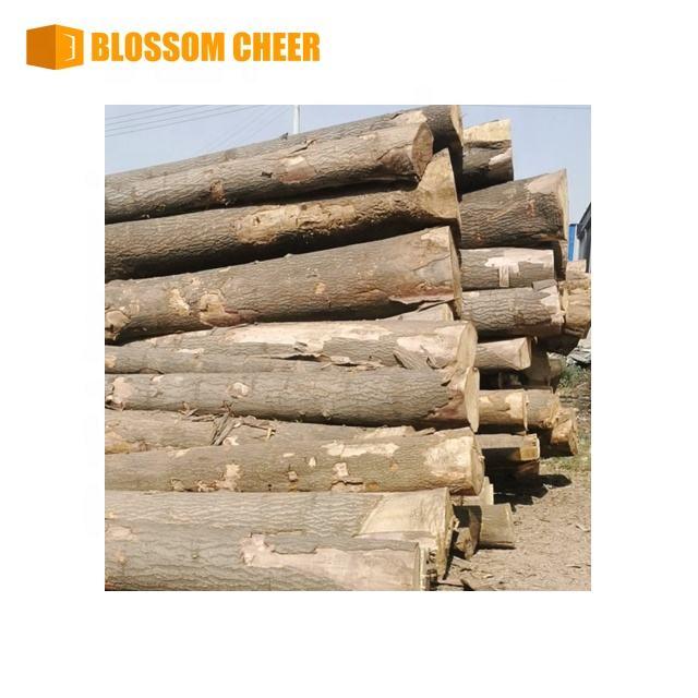 Long Wooden Wood Dowel Sticks Craft Sticks Timber Sticks Plant Stakes Mangrove