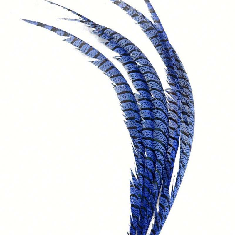 20-25 pouces Haute Qualité Moins Cher Dame Amherst Center Queues Plume avec Le Prix Concurrentiel