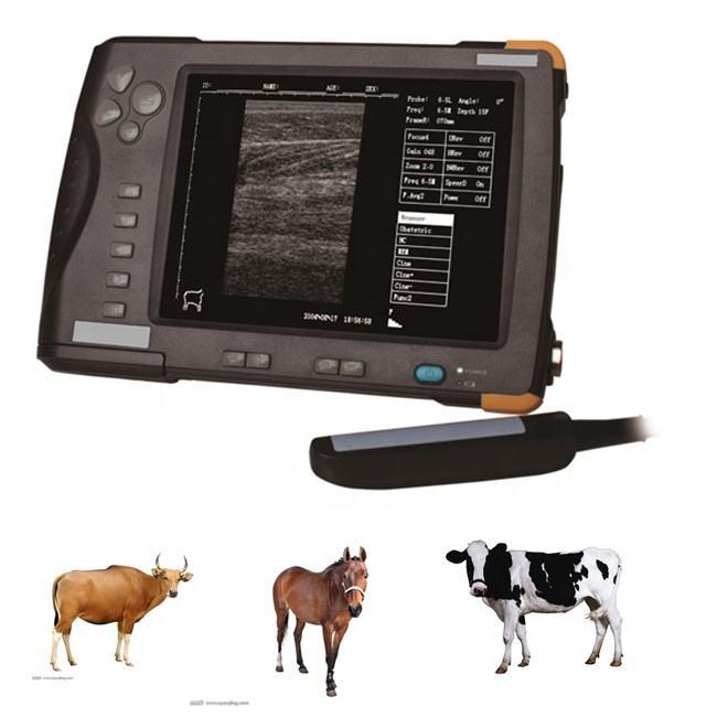 Portátil de <span class=keywords><strong>gran</strong></span> animal de ultrasonido veterinario con endorrectal sonda CD66V