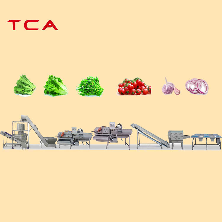 fruit and vegetable processing line vegetables cleaning processing line