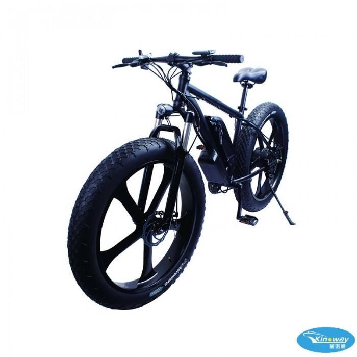 500 와트 힘 Fat Tire Ebike <span class=keywords><strong>산</strong></span> 전기 자전거 대 한 Sport 오프로드 자전거를