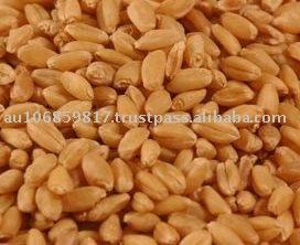 Australian Wheat APH1 Australian Prime Hard wheat APH2 APW1 APW2 Australian Soft wheat ASW1 Durum Wheat AGP Feed wheat