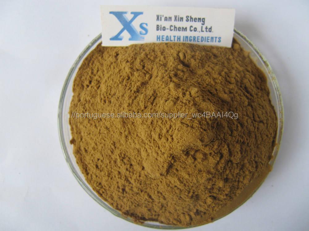 Gmp Natural alta da Apple extrato de raiz de árvore Phloridzin 80%