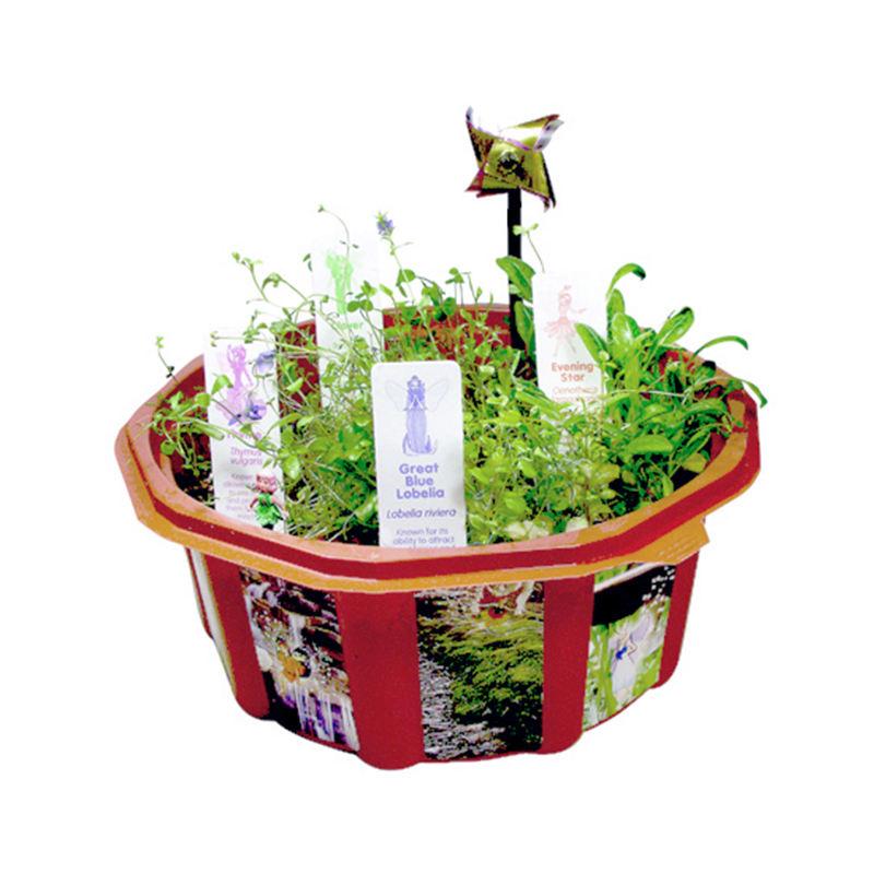 Cổ tích Bộ Ba Dome Hồ Cạn khoa học giáo dục đồ chơi cho trẻ em dài thân cây hoa thủy tinh