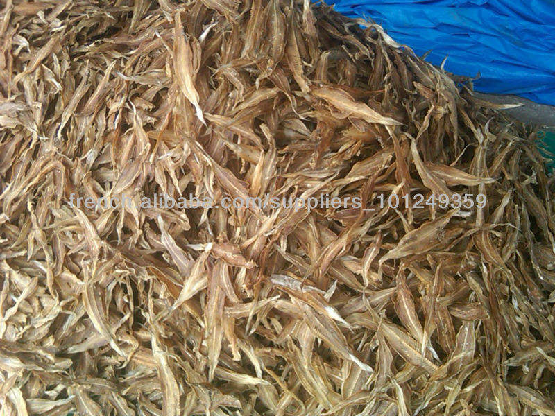 Dried Sole or Tongue Fish