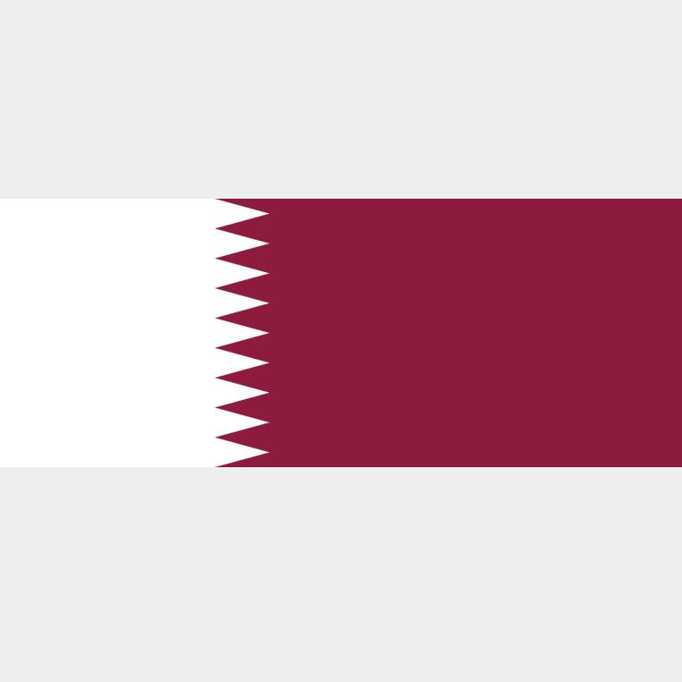 Сделано в Китае Превосходное качество 20 лет профессионального опыта флаг Катара